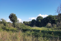 Parco Regionale Urbano Pineto, Rome, Italy