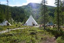 Rypetoppen Adventurepark AS, Meraker Municipality, Norway