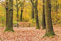 Drouwenerzand Attractiepark, Drouwen, The Netherlands