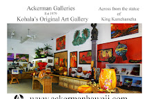 Ackerman Galleries, Kapaau, United States