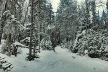 Marble Mountain, Steady Brook, Canada