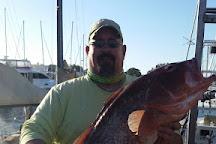 Bad Habit Sport Fishing Charters, Venice, United States