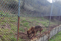 Iberian Wolf Recovery Centre, Mafra, Portugal