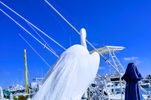 Clearwater Boat Rentals, Clearwater, United States