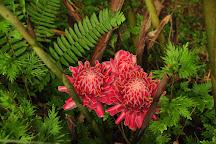 Le Jardin De La Montagne, Le Vauclin, Martinique