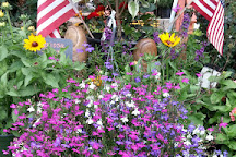Grandfather Mountain Nursery Garden Center, Banner Elk, United States