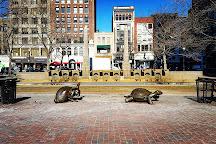 Tortoise and Hare, Boston, United States