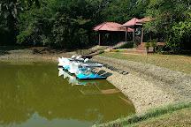 Henerathgoda Botanical Garden, Gampaha, Sri Lanka