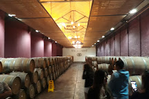 Viu Manent Winery, Santa Cruz, Chile