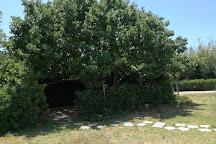 Oasi Natura Mocrei Ecosezione, Ispica, Italy