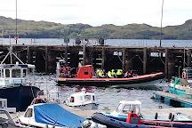 Hebridean Whale Cruises, Gairloch, United Kingdom