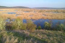 Srebarna Nature Reserve, Srebarna, Bulgaria