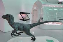 Museu de Historia Natural, Sintra, Portugal
