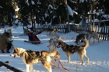 Rami's Huskies, Kittila, Finland