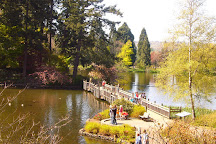 Crystal Springs Rhododendron Garden, Portland, United States