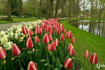 Guiarte Tours, Amsterdam, The Netherlands