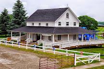 The Petting Farm at Domino's Farms, Ann Arbor, United States