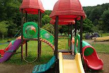 Yamanakako Hananomiyako Park, Yamanakako-mura, Japan
