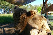 Honeycomb Valley Farm, Nabiac, Australia
