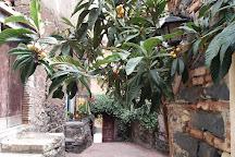 Museo Casa Del Nespolo, Acitrezza, Italy