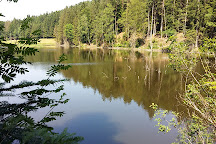 Dreiburgensee - Rothauer See, Tittling, Germany