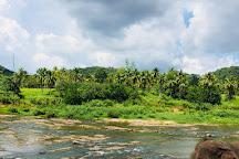 Jayasak Tours, Kalutara, Sri Lanka