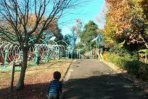 Heisei Memorial Park Japan Showa Village, Minokamo, Japan