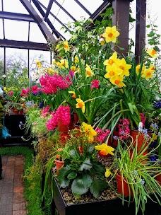 Glasgow Botanic Gardens glasgow
