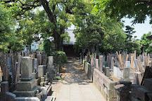 Yanaka Cemetery, Taito, Japan