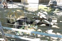 Charles Paddock Zoo, Atascadero, United States