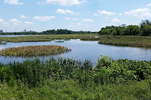 John Heinz National Wildlife Refuge at Tinicum, Philadelphia, United States