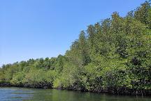 Mangrove Forest Nusa Lembongan, Nusa Lembongan, Indonesia