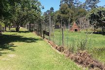 Garden Route Wolf Sanctuary, Plettenberg Bay, South Africa