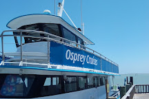 Osprey Cruises, South Padre Island, United States