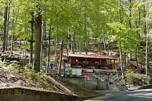 Parco Avventura Bergamo, Roncola, Italy