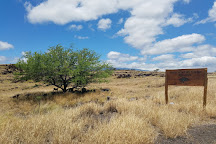 Waikoloa Dry Forest Initiative, Waikoloa, United States