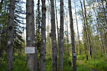 Goodsir Nature Park, Prince George, Canada