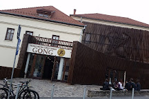 Teatrul Gong, Sibiu, Romania