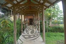 Pura Aventura, El Guapote, Costa Rica