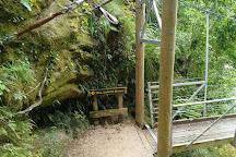 Wainui Falls Track, Abel Tasman National Park, New Zealand