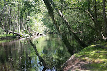 Lumber River State Park, Orrum, United States