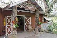 Aloha Hawaii Tours, Honolulu, United States