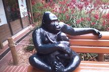 Perth Zoo, South Perth, Australia
