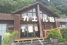 Awashima Marine Park, Numazu, Japan