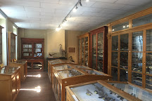 Musee d'Histoire Naturelle Philadelphe Thomas, Gaillac, France