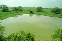 Keoladeo National Park, Bharatpur, India