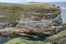Mull Head Nature Reserve, Deerness, United Kingdom