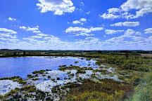 Okefenokee National Wildlife Refuge, Folkston, United States