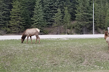 Yoho National Park Visitor Centre, Field, Canada