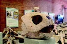 Key West Turtle Museum, Key West, United States